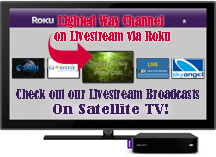 Satellite TV Roku System